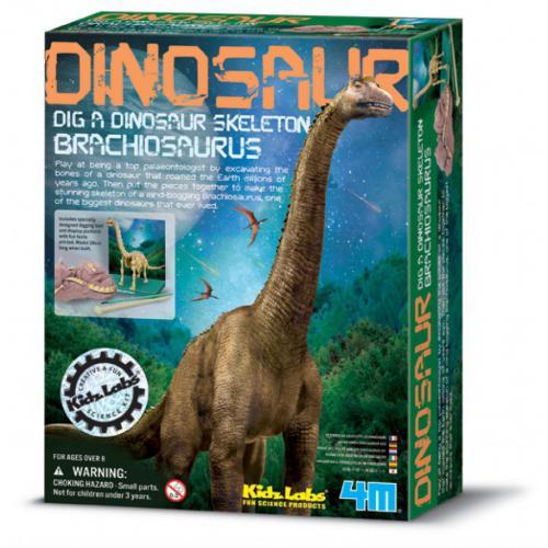 Brachiosaurus (8years+)